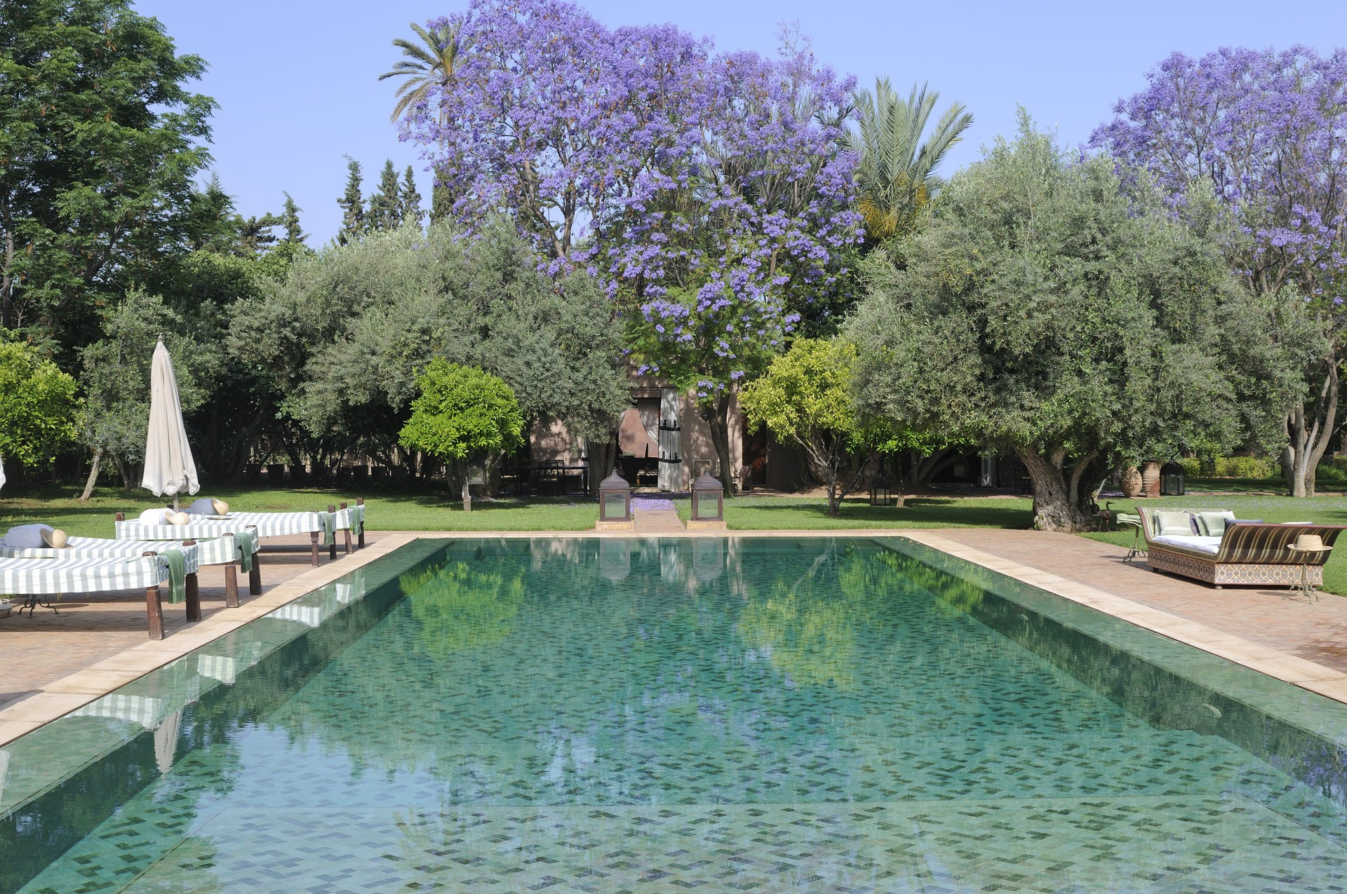 gallery-ezzahra-pool-with-purple-flowers